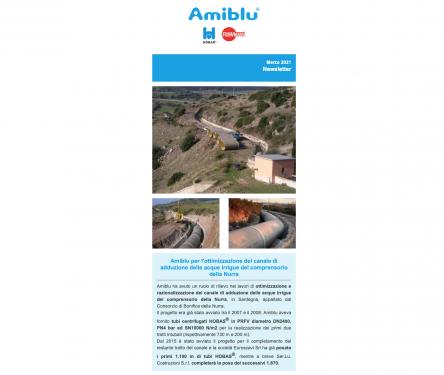 Amiblu Newsletter Marzo 2021